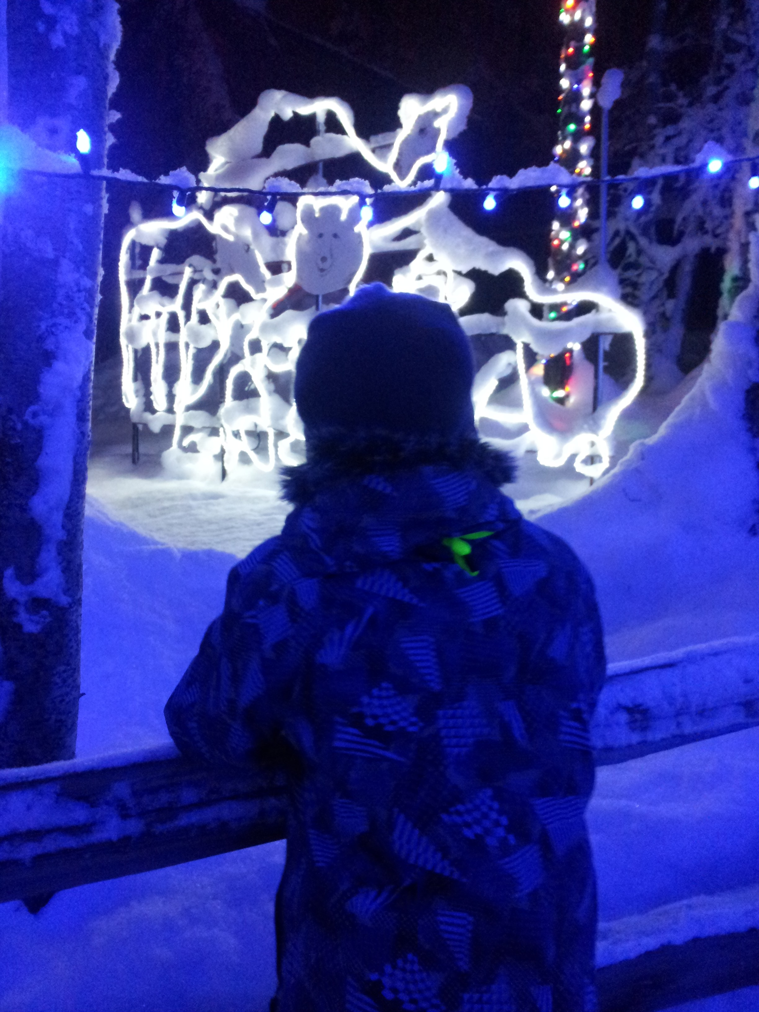 Light up the night at the Alaska Zoo.