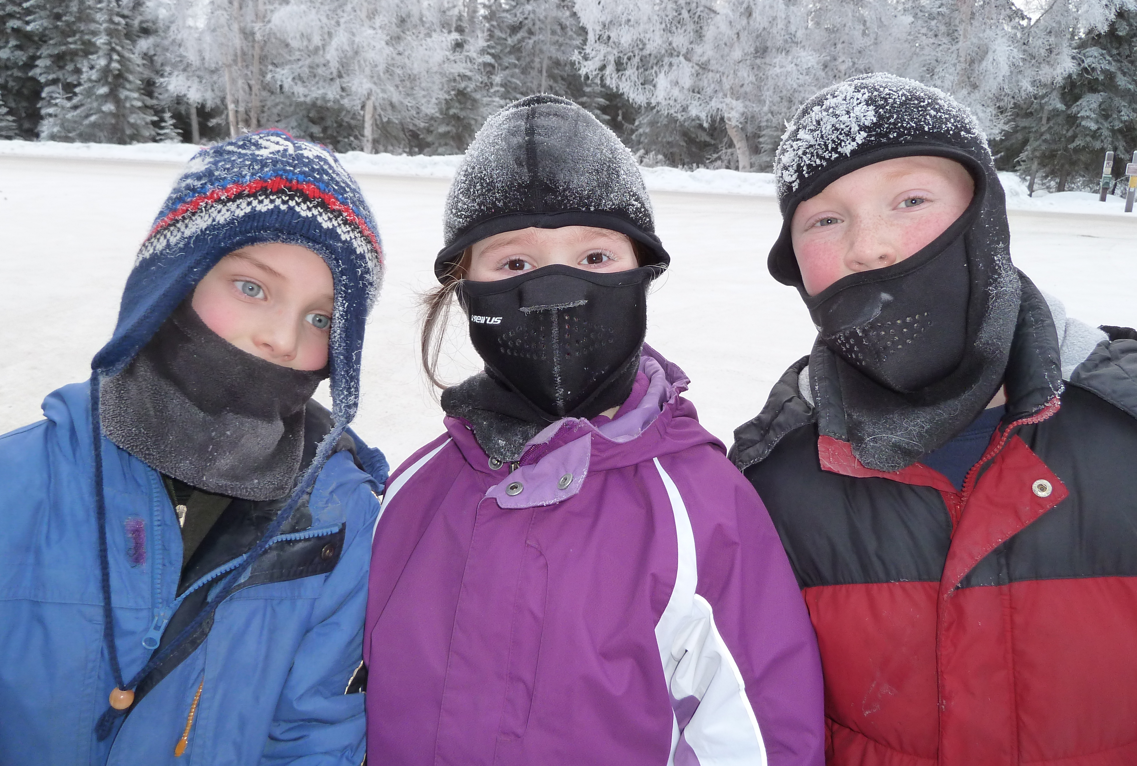 Alaska Snow Play: Three great places to enjoy our ...