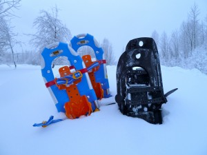 Snowshoeing is an easy family activity that doesn't require a lot of gear. Eagle River Nature Center is perfect!