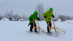 Kicksleds are available for loan at the Alaska Wildlife Conservation Center, for free! Take a spin on a snowy day.