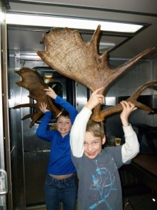 Sometimes, conductors find cool things on the tracks during Aurora Winter Train adventures. Like moose antlers!