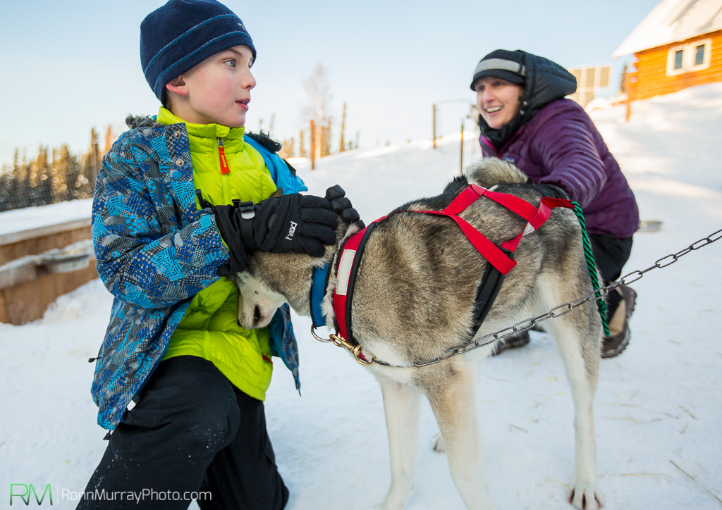 Involving kids in the mushing process is a critical element to enjoyment of the sport. [image Ronn Murray Photo]