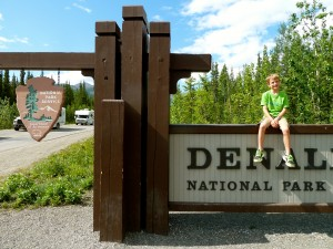 Denali NP campgrounds are situated at prime locations throughout the park.