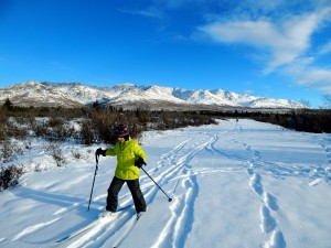 Wide trails and stellar views greet visitors along the Mountain Vista trail system in Denali National Park. AKontheGO/Erin Kirkland
