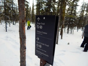 The easy Taiga Trail is perfect for young hikers, skiers, or snowshoers. AKontheGO/Erin Kirkland