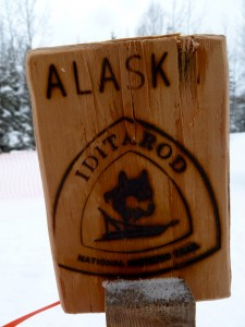 The Iditarod Trail is warming up, again.