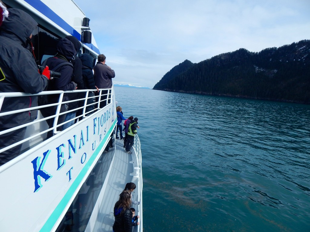 Kenai Fjords Tours offers comfortable viewing, and a ton of beautiful Alaska scenery. Erin Kirkland/AKontheGO.com