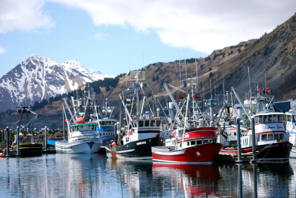 Kodiak's harbor is home to a vibrant fishing fleet. Erin Kirkland/AKontheGO