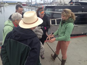 The Creatures of the Dock Tour along Homer Spit offers visitors and locals an hour of up-close education.  Image courtesy CACS