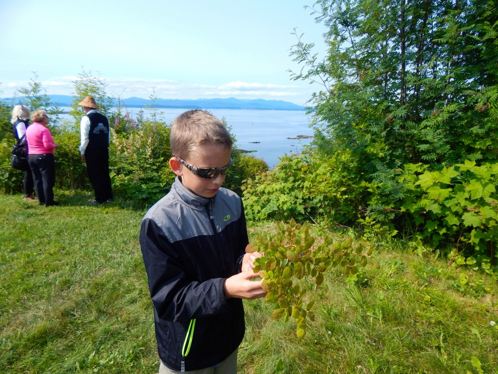 Taking a blueberry bush break in Kake, Alaska during an Alaskan Dream Cruise. Erin Kirkland/AKontheGO
