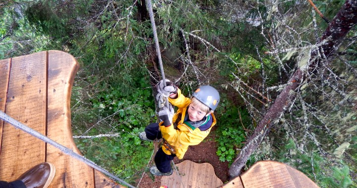 Sail through the forest with Stoney Creek Canopy Adventures in Seward & Sail through the forest with Stoney Creek Canopy Adventures in ...