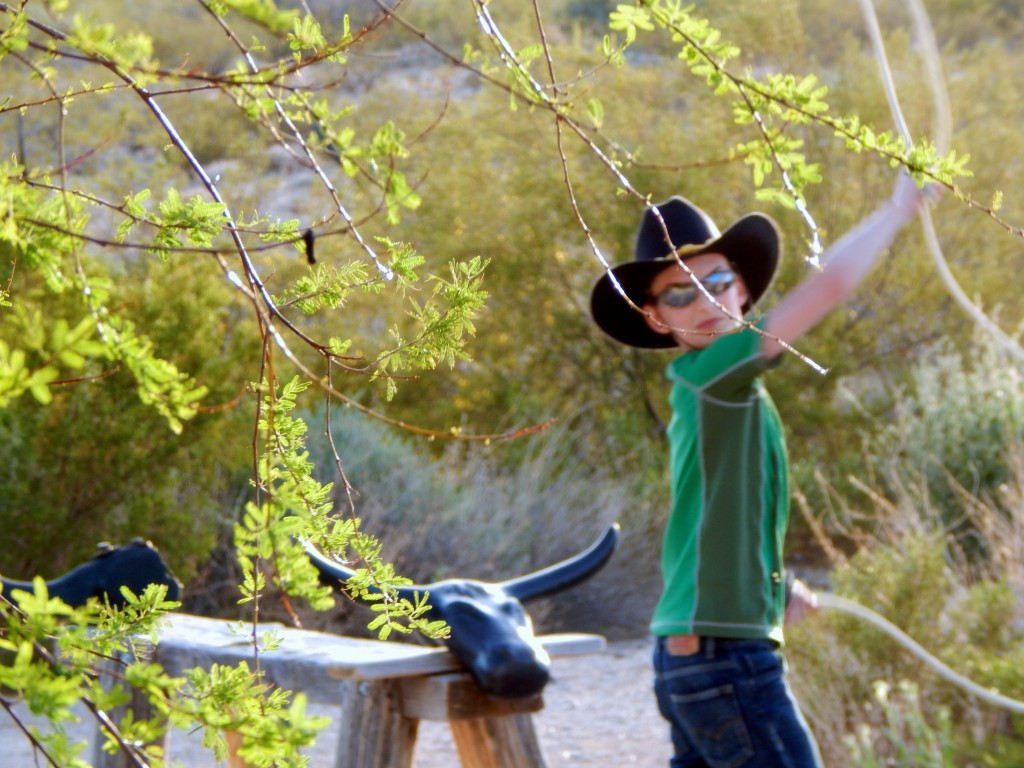 A wrangler-in-training practices roping a steer at Stagecoach Trails Guest Ranch in Yucca, Arizona.
