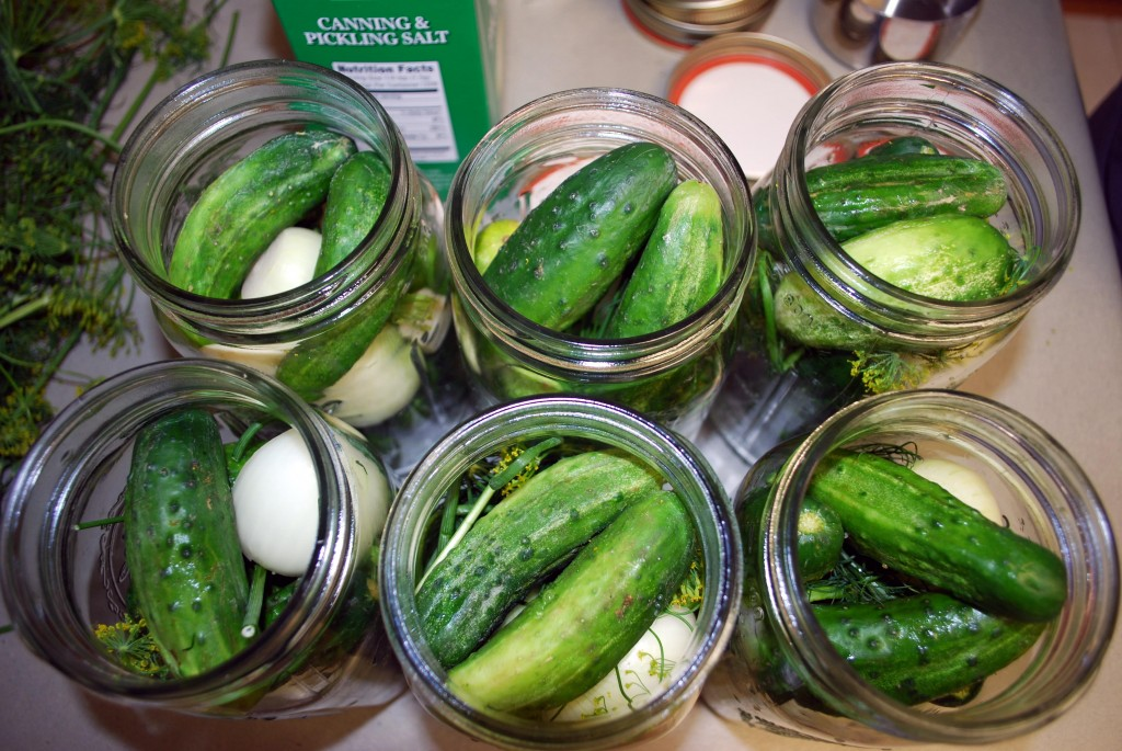 Pickling cukes fill canning jars after a visit to an Anchorage farmers market. Erin Kirkland/AKontheGO