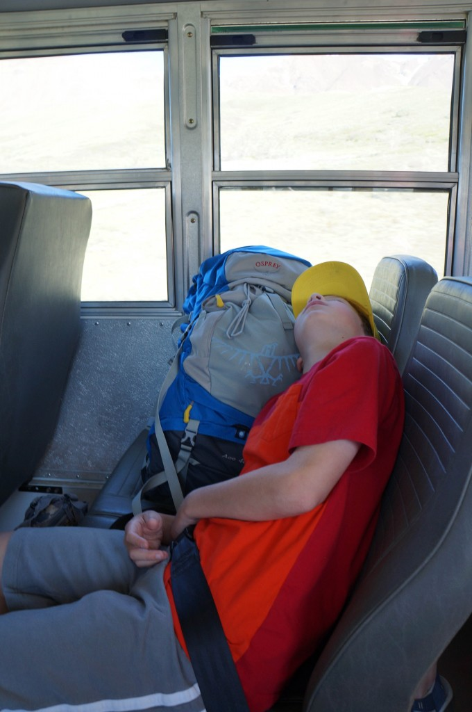While the Denali National Park shuttles do provide excellent viewing of wildlife and scenery, they can be long for children.