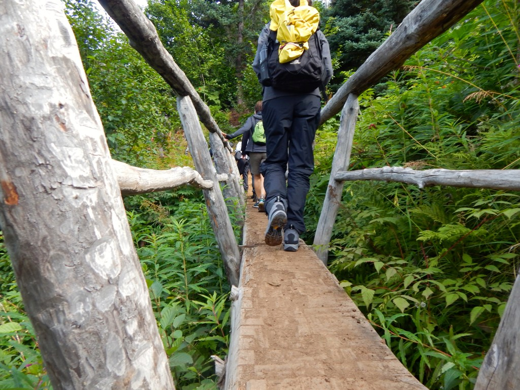 Hiking Kachemak Bay State Park is but one of many activities guests at Stillpoint Lodge enjoy.