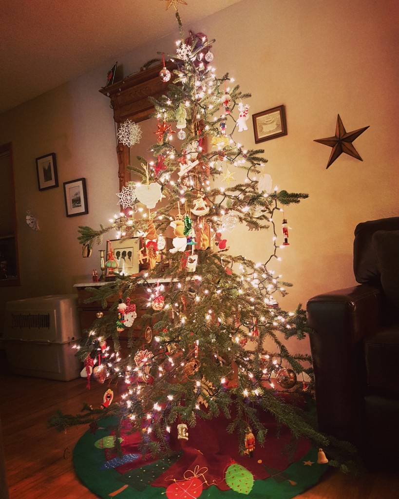 The finished product. We love our little tree. Erin Kirkland/AKontheGO